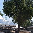 Cedar Point Picnic Area